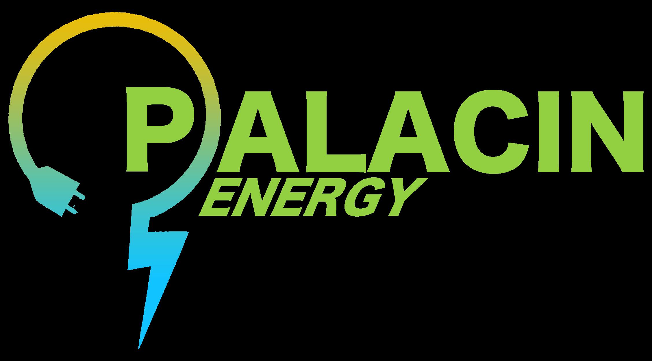 Palacin